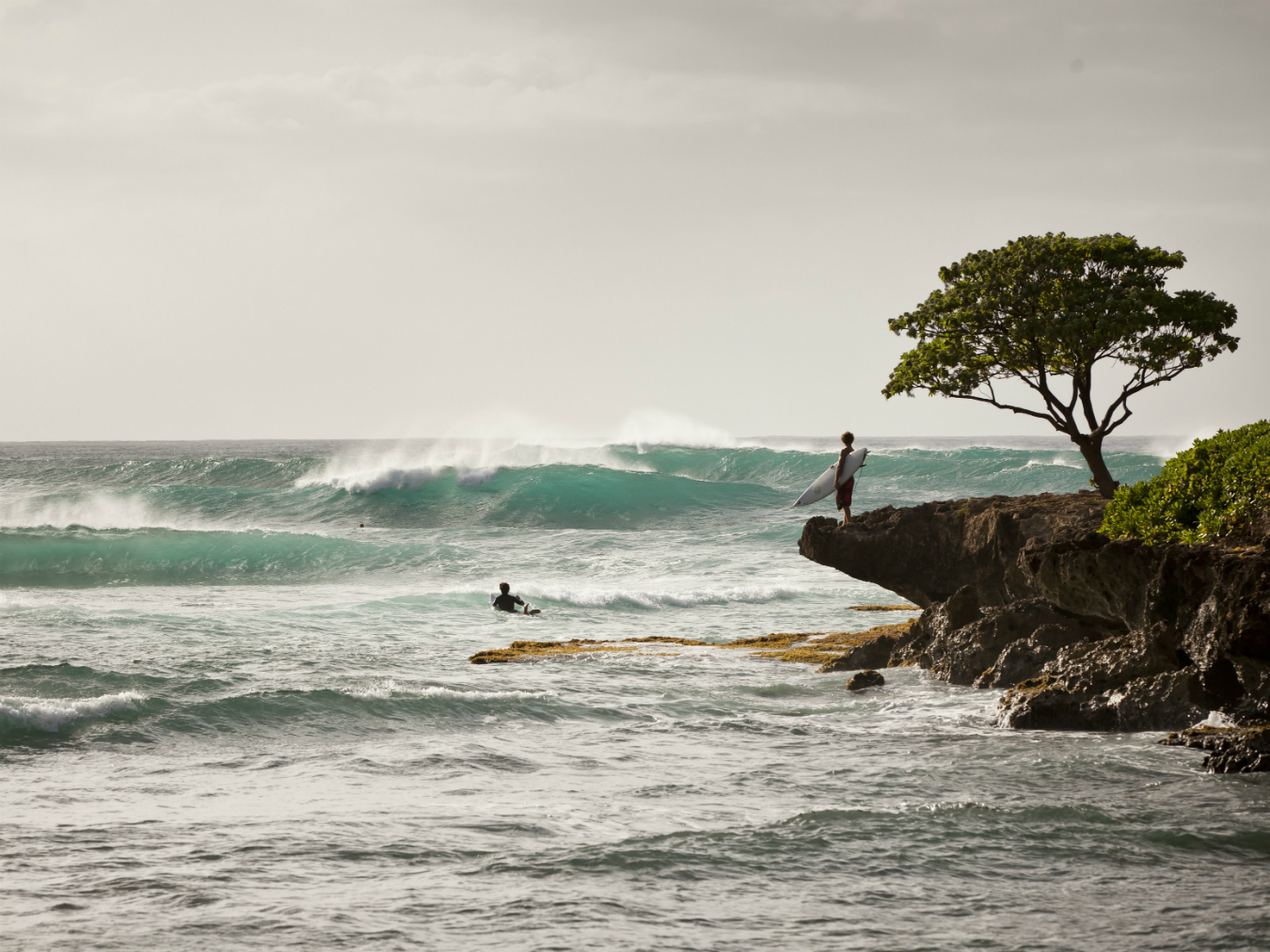 NUVO Daily Edit: Turtle Bay Resort