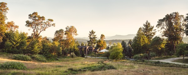 Daily Edit: Bodega Ranch