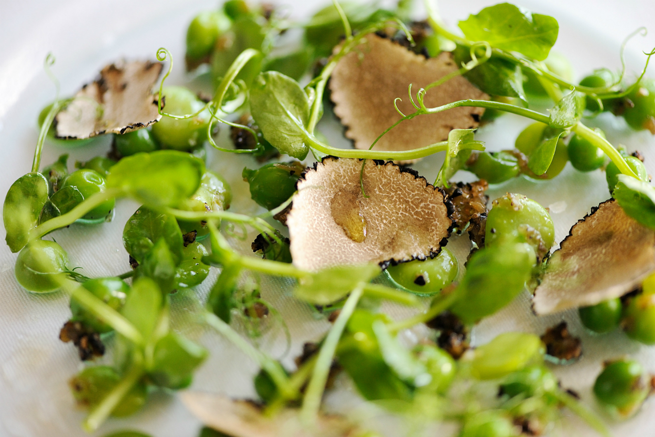 Daily Edit: Spring Salads, Warm Truffled Peas