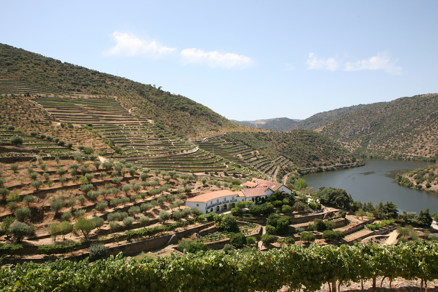Portugal's Douro Valley, Daily Edit
