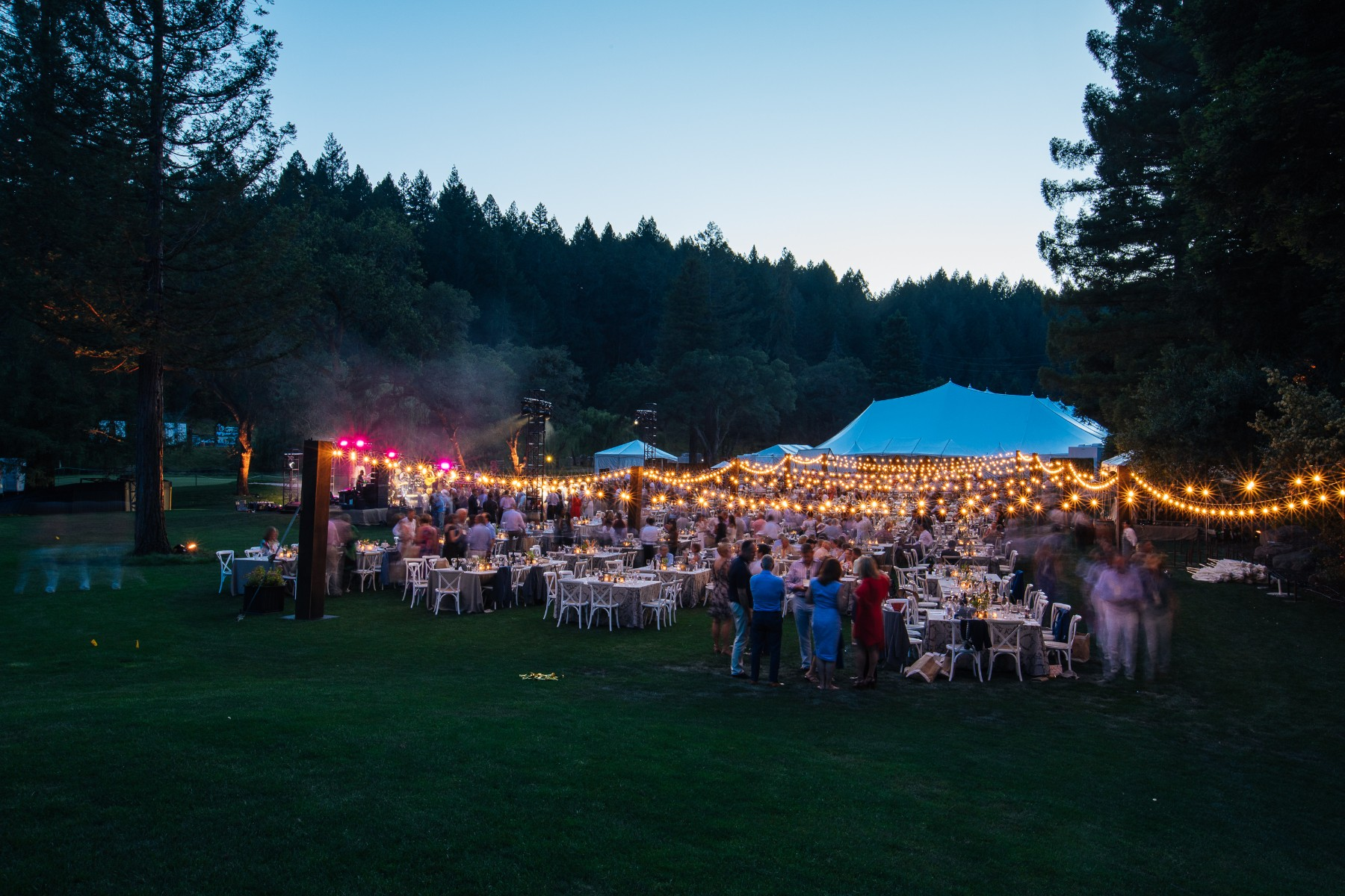 Auction Napa Valley | NUVO