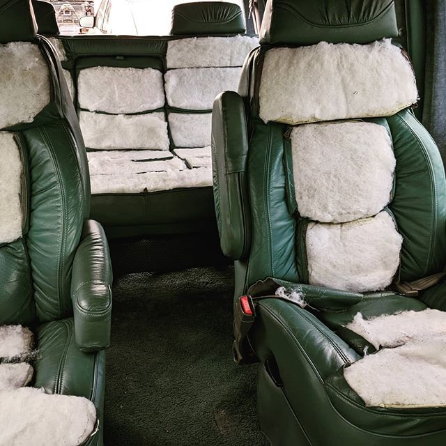 inside car upholstery