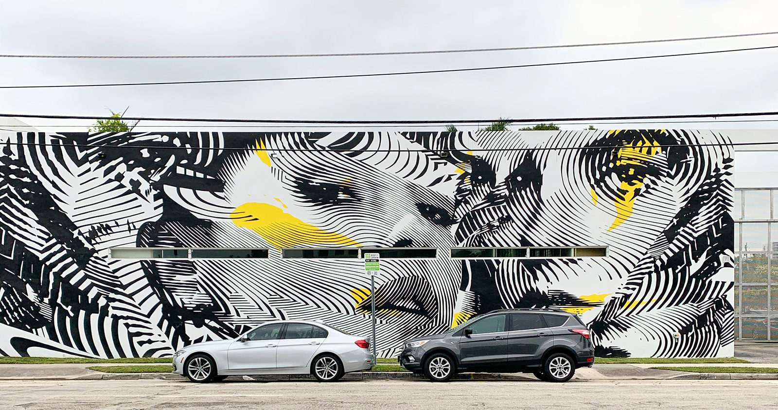 Wynwood Wall graffiti