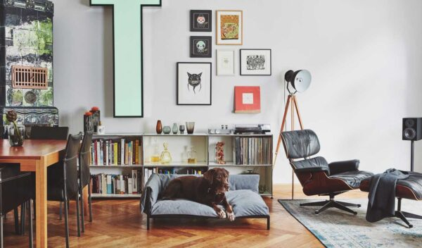 Design-Forward Pet Furniture That Purrfectly Blends in With Your Home